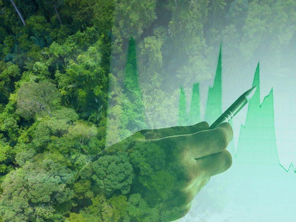 ESG: as três palavras mágicas que estão dominando o mercado de investimentos