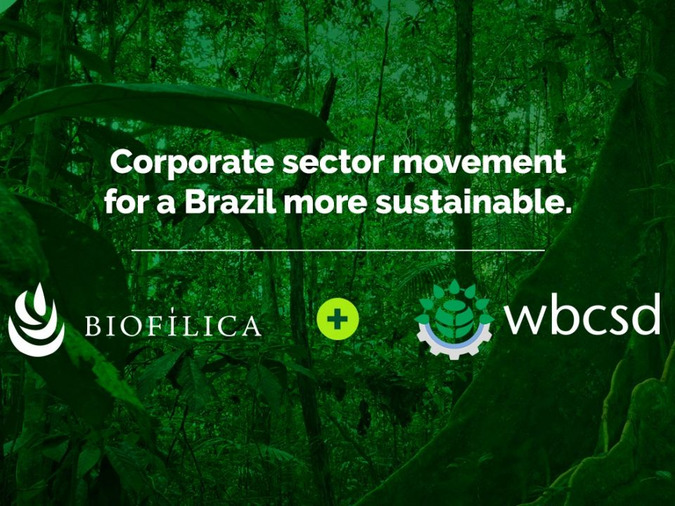 Biofílica joins the corporate sector movement for sustainability, led by WBCSD
